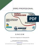 PROHIERROS.pdf