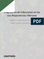 Diagnóstico de Infecciones en las vías Respiratorias inferiores.pptx