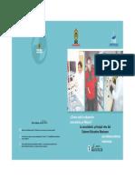 INEE y SEV.pdf