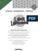 PLANIFICACION ANUAL LAPIZ LAPICERA PRIMER GRADO.pdf
