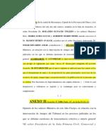 Reglamento Amicus Curiae Chaco