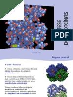 Síntese proteica Cientic