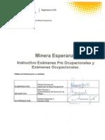 Instructivo Pre Ocupacionales y Ocupacionales 2013