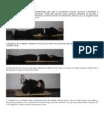 Guía completa de elongación