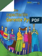 Libro Gerente Pyme 2013
