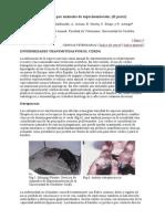 [medicina veterinaria] animalario-zoonosis animales experimentación parte2-ciencias veterinarias sep2000 [por trisquelion]