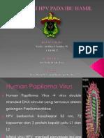 Infeksi HPV Pada Ibu Hamil
