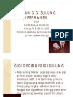 Perbedaan Gigi Sulung Dan Permanen