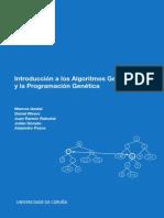 Introduccion a Algoritmos Matlab