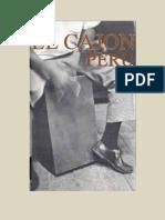 PERCUSSÃO  - CAJON