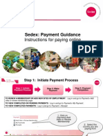 PAYMENTS - Online Guidance 2013_Final English