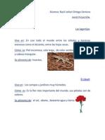 Investigacion nZLI, Lagartica y Clavel