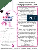 2009 SIUSBC BABC Campaign Flyer