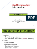 Essentials of Human Anatomy 1 (Introduction)