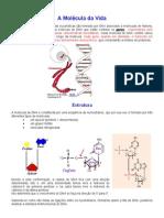 A Molécula da Vida - vestibular