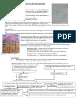 Kidney Report