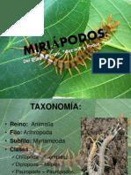 MIRIÓPODOS