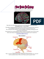 [MDMA]MDMA Neurochemistry