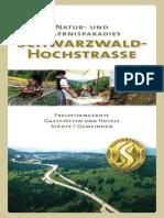 Schwarzwaldhochstrasse.pdf