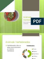 animaisvertebrados-100823135024-phpapp02