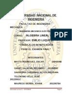 TRABAJO DE BONIFICACIÓN. SOLUCIONARIO GROSSMAN.doc