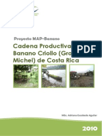 PURE Banano Criollo