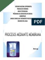 Procesos de Membrana 2014