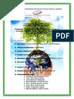 actividad 2 planificacin (1).pdf