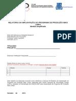 Relatorio Do Mini Projeto 2013 1 (1)