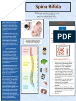 Fact Sheet spina bifida