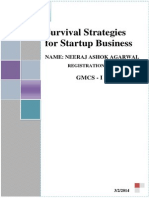 Survival Strategies for Startup Business