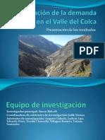 Investigación de la demanda turística en el Valle del Colca - Presentación de los resultados
