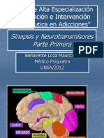 Sinapsis+y+Neurotransmisores+I.ppt[1]