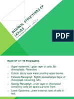 biopresentationinternalstructuresofleaves-130811070327-phpapp02