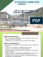 Industrializacion Del Gas-expo