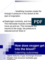 how does oxygen get into the blood