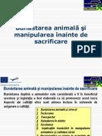 Bunăstarea animală şi