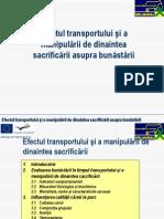Efectul transportului şi a