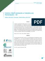 Turismo, meio ambiente e trabalho em Florianópolis - SC