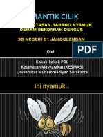 Pemberantasan Sarang Nyamuk Jumantik Jangglengan