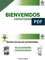 Basico de Salud Ocupacional