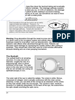 02-eyeanatomy part2.pdf