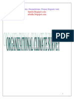21430485 Organizational Climate Survey Project Report