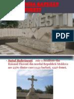 ECOLOGIA SATULUI BAHRINESTI