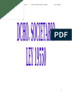 Desgrabado sociedades UNNE