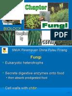 Fungi 2009