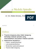 Trauma Medula Spinalis