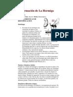 Información de La Hormiga