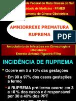 file_250608203147_RUPREMA_UFMS_2007