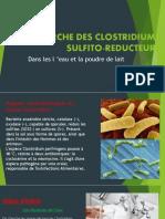 Recherche Des Clostridiums Sulfito-reducteurs